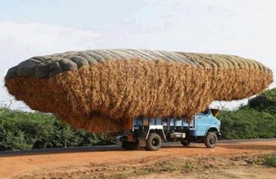 Photo of Штраф за перегруз грузового и легкового автомобиля