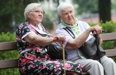 Пенсия по старости без трудового стажа в 2020 году, размер, новости и изменения законодательства
